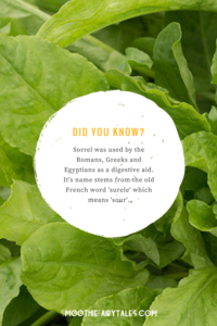 sorrel health facts